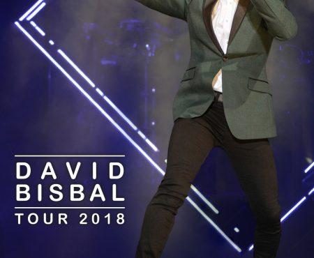 Crónica: David Bisbal, así fue su apoteósica noche en Madrid con su nueva gira 'Tour 2018'